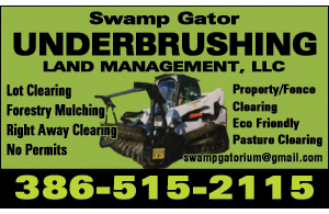 Swamp Gator Underbrushing